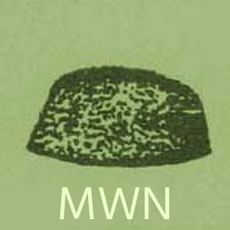Mohib-e-Wattan Nowjawan Inqilabion Ki Anjuman (MNAKA)